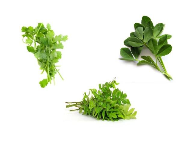 freshspices